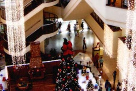 Buying happiness or stress? The role of empathy in Christmas shopping